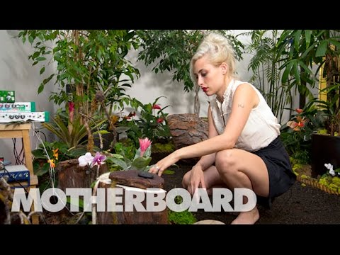 Meet the Sonic Artist Making Music with Plants: Sound Builders