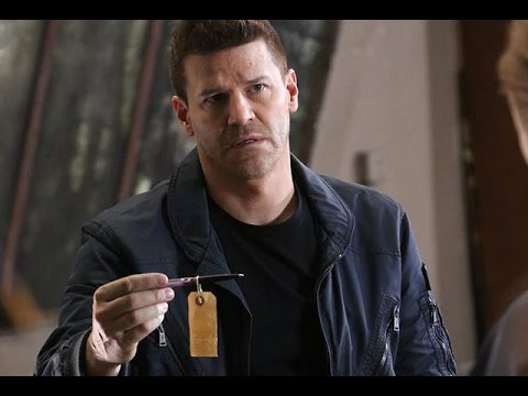 David Boreanaz Books Post-Bones TV Role