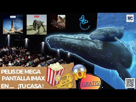 PELIS DE MEGA PANTALLA IMAX  EN TU CASA  ¡GRATIS! | PAPALOTE MUSEO | 2020  | CONOCE LA CARTELERA |