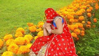 #sarojmeenadance#_रोती_छोड़_गयो_नंदलाला//Meena song//meenawati song//singerhansrajVarnala//new song