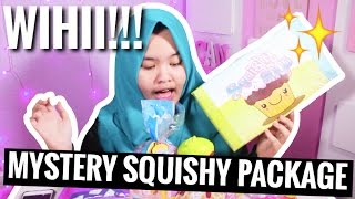 MYSTERY SQUISHY PACKAGE!!!