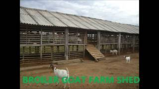 Broiler Goat Shed ,india