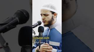 Recitation from Surah Yaseen recited by Mohamed Obada