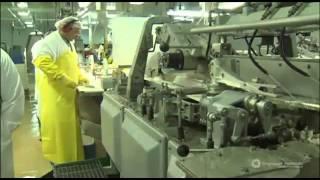 История компании Champion Petfoods (ACANA, Orijen)