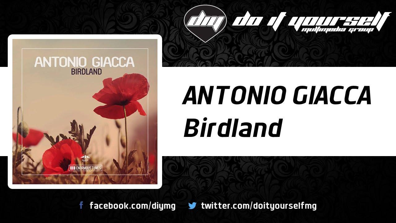 Antonio Giacca Antonio Antonio BirdlandofficialYoutube BirdlandofficialYoutube Giacca Antonio Giacca Antonio BirdlandofficialYoutube Giacca BirdlandofficialYoutube thCdsQr