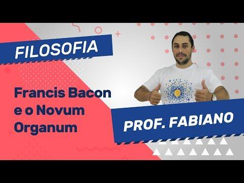 Francis Bacon e o Novum Organum