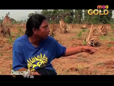 women Software Engineer |EMU bird farming | Natural Farming-9