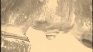 Groyld - Beth Gibbons