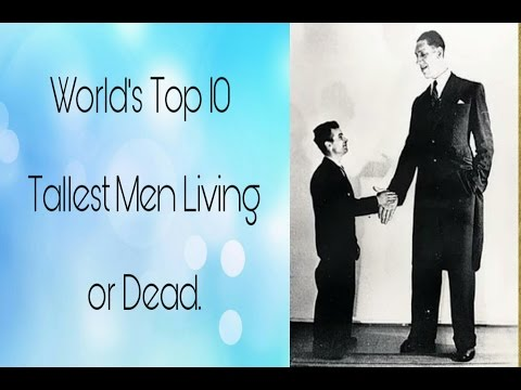 Top 10 Tallest Men In The World 2017 Tallest Man Ever - MP3