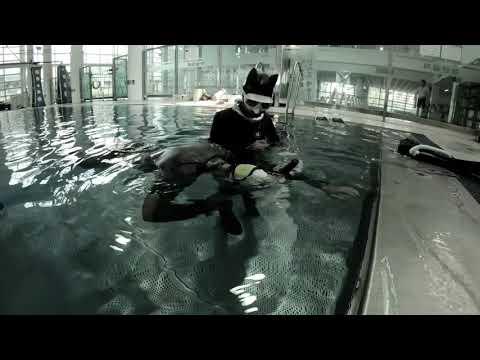 스테틱신동 #프리다이빙 #freediving #다이빙신 #funnydining #funnyvideo