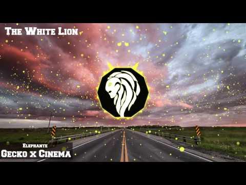Elephante - Gecko x Cinema