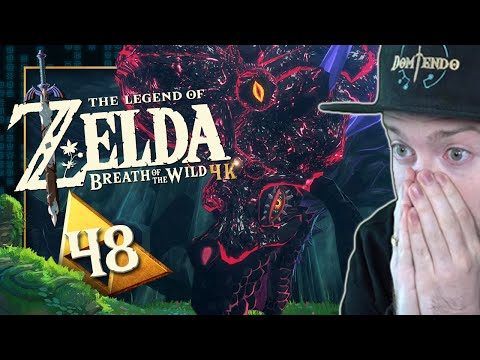 NAYDRA in GEFAHR! GEILSTE QUEST! 🌳 THE LEGEND OF ZELDA BREATH OF THE WILD #48