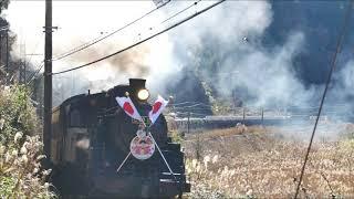 2020年01月02日大井川鉄道C10新春開運号
