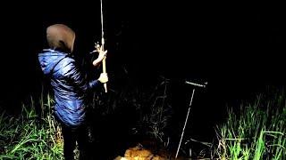 Ночью клюнул СОМ Ночная рыбалка на Дону в Воронежской области