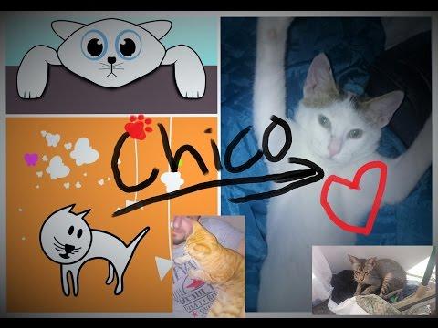Chico - Feature Film - Full Length Movie w Garfield & Slim Shady