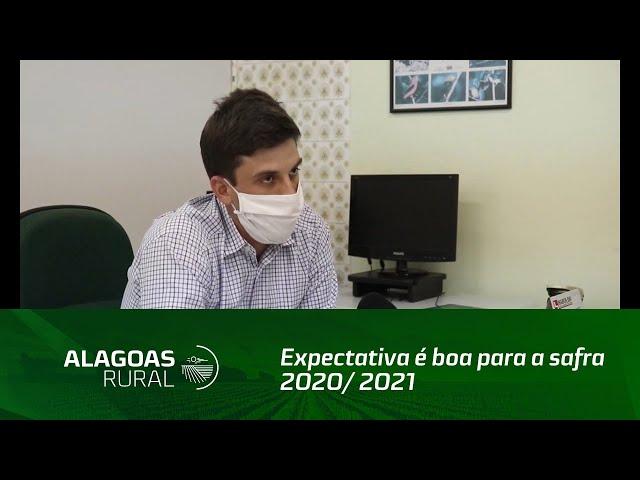 Expectativa é boa para a safra 2020/ 2021 de cana-de-açúcar em Alagoas