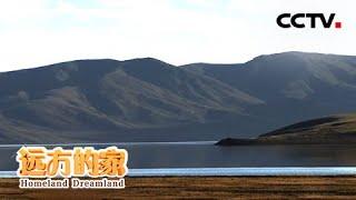 《远方的家》 20200512 行走青山绿水间 黄河寻源| CCTV中文国际