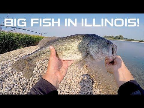 Big Fish In Illinois | Private Lake