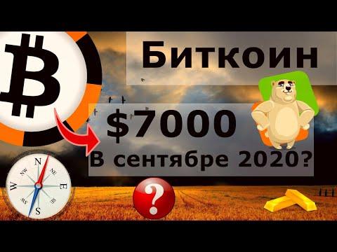 Биткоин $7000 в сентябре 2020? Ethereum +76% долгосрочных держателей за год