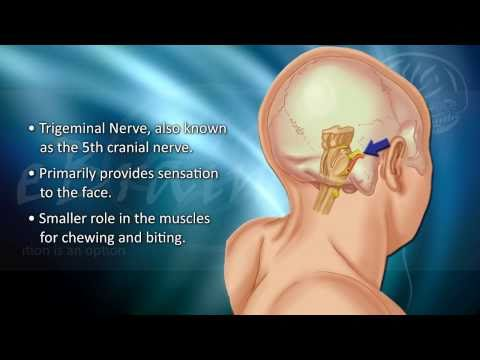 Live Surgery: Trigeminal Neuralgia Decompression - David W. Newell, MD.