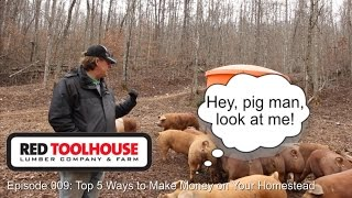 Ep 9: Top 5 Ways to Make Money on Your Homestead