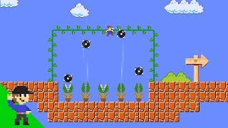Level UP: Mario's Obstacle Course Mayhem