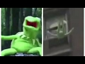 KERMIT THE FROG FREEZING AND FALLING OFF THE ROOF (LIVE)