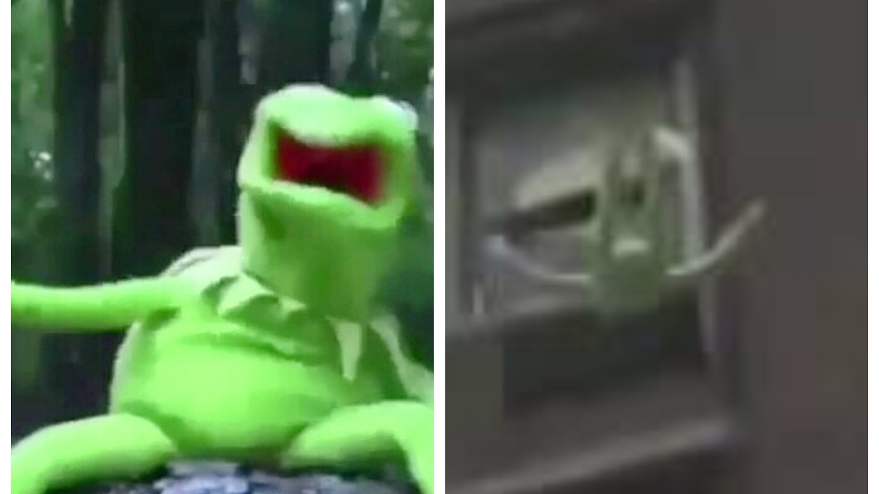 Kermit The Frog Freezing And Falling Off The Roof Live