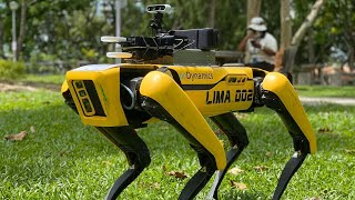 video: Watch: Robot dog reminds park goers about social distancing in Singapore
