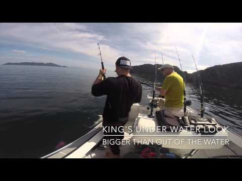 Jig Fishing @ The Hen & Chicks - Fishing Experience NZ