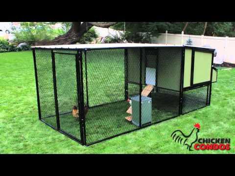 Basic Urban Chicken Coop from Chicken Condos