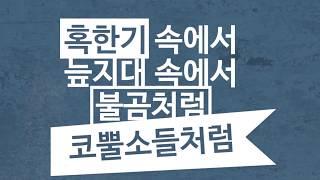 My Mission-미스터탁(서종현)
