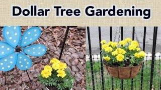 Dollar Tree Gardening | My favorite products