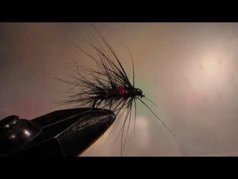 Fly Tying - The Bibio Fly For Trout