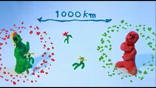 Wie die Psyche funktioniert (Animationsfilm)