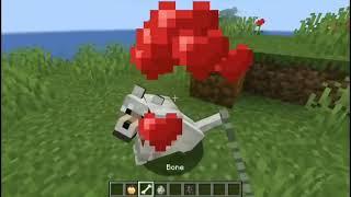Minecraft SUPER WOLF # တိုတို