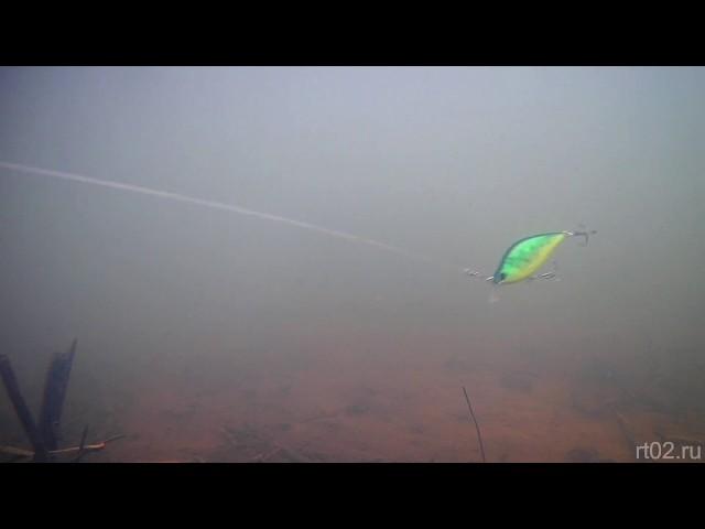 КОПИЯ ВОБЛЕРА YO ZURI 3D FLAT CRANK ОТ WLURE C503 (подводная съемка)