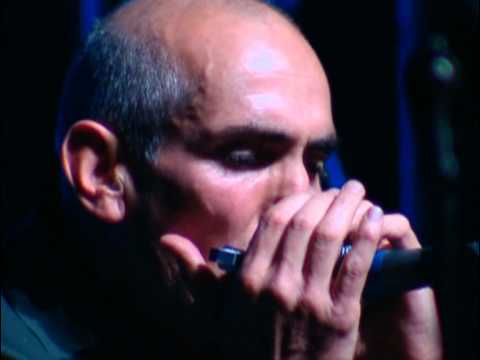 PAUL KELLY - They Thought I Was Asleep (Live)