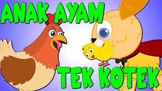 TEK KOTEK KOTEK ANAK AYAM TURUN BERKOTEK | Lagu Kanak Kanak Melayu Malaysia