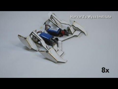Meet the robot that builds itself