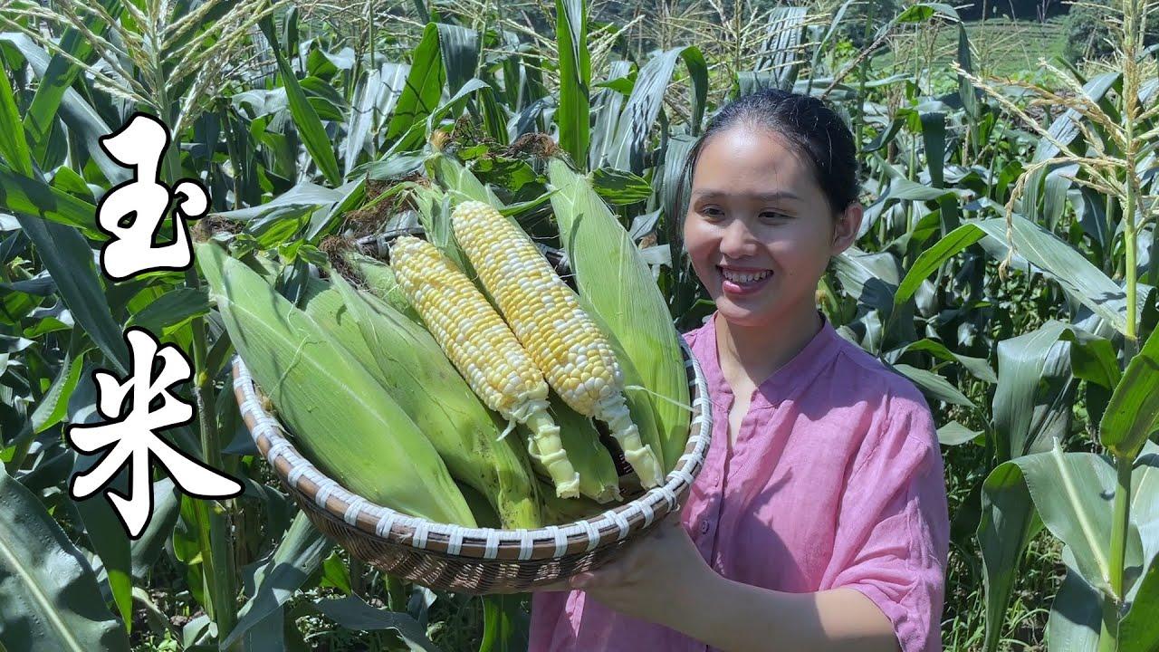 玉米不要再水煮,试试这几种做法,大人小孩都爱吃