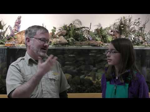 Weathering the World of Winter- Bill Nye Project | Pacific Northern Academy | Anchorage, Alaska