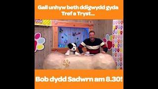 Gall unrhyw beth ddigwydd gyda Tref a Tryst!