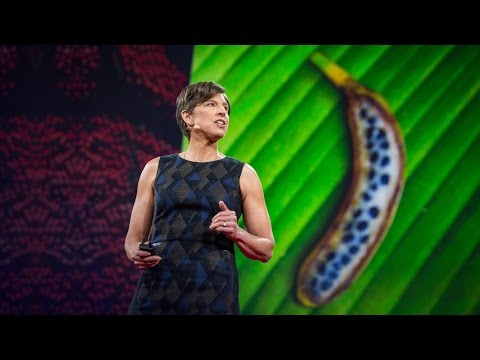 Pamela Ronald: The case for engineering our food