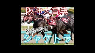 【2019 阪神大賞典 参考レース】 シャケトラ 近3レース