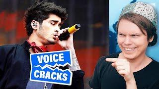 Funniest Singing Voice Cracks