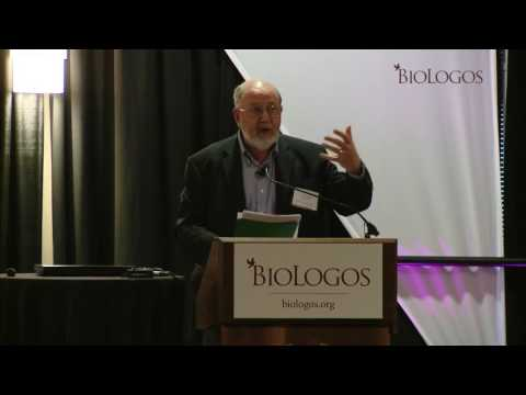 N.T. Wright: If Creation is Through Christ, Evolution is What You Would Expect