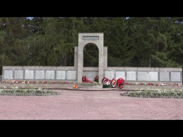 Изображение предпросмотра прочтения – ЕгорМаляренко читает произведение «Братские могилы» В.С.Высоцкого