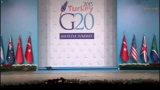 Кошки на саммите G20. 15.11.2015г.