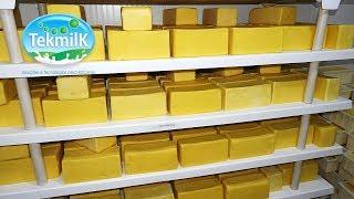Fabricação do queijo mussarela - como fabricar queijo mussarela - laticínio sucupira _  #laticínios